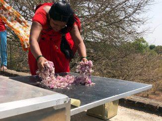 چگونه یک شرکت هندی، با هدرروی مواد غذایی مبارزه میکند