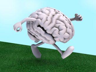 پیادهروی کنید تا مغز سالمتری داشته باشید